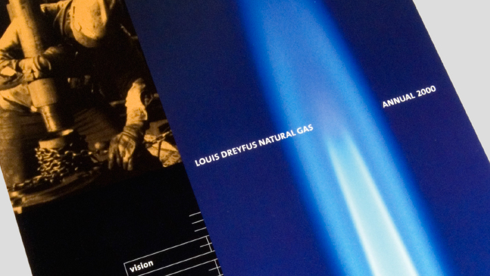 LDNG Annual Report 2000