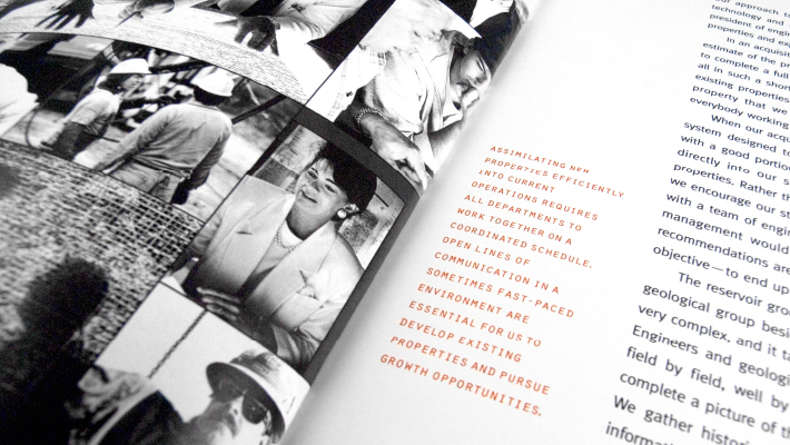 LDNG Annual Report 1993